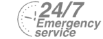24/7 Emergency Service Pest Control in Maida Vale, Warwick Avenue, W9. Call Now! 020 8166 9746