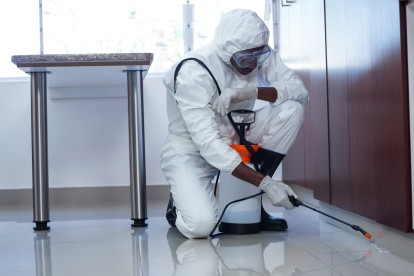 Emergency Pest Control, Pest Control in Maida Vale, Warwick Avenue, W9. Call Now 020 8166 9746